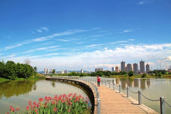 汉中滨江生态湿地公园一角