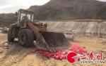 陕西府谷县集中销毁假冒伪劣高端白酒500余瓶 市场价值五十二万余元 - 古汉台