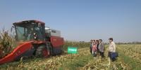 西安市农机总站开展玉米籽粒收获+烘干一体化试验示范 - 农业机械化信息