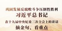 习近平总书记在十九届中央纪委三次全会上的讲话,摘金句、看重点 - 西安网