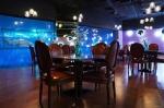 酷暑天来曲江海洋公园享清凉 海底餐厅千杯果饮免费畅饮 - 西安网
