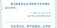 """端牢""""中国饭碗"""",总书记这样说 - 西安网"""